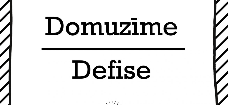 """Skrivanek Baltic valodas padoms """"Domuzīme"""" pret """"Defise"""""""